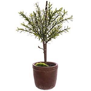 "18"" Myrtle Ball Topiary in Cement Pot Green (Pack of 4) 35"