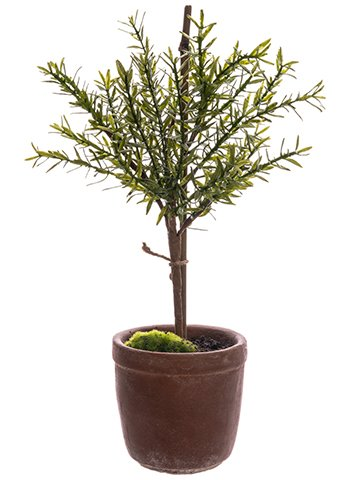 18-Myrtle-Ball-Topiary-in-Cement-Pot-Green-Pack-of-4