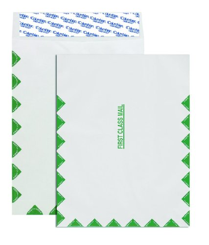Columbian Co806 10X13 Inch Tyvek First Class Mail White Envelopes  100 Count