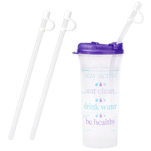 80c5a60ed8 32oz. Car Friendly Time Marked Water Bottle with Swivel Lid and Straw ( Purple)