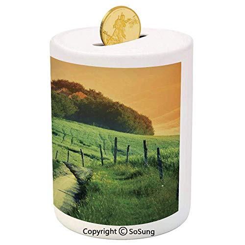 SoSung Tuscan Ceramic Piggy Bank,Peaceful Landscape of Pienza Tuscany Vineyard Trees Rural Ancient Farm House 3D Printed Ceramic Coin Bank Money Box for Kids & Adults,Orange and Green