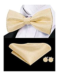 Dubulle Mens Gold Silk Bow Tie and Pocket Square Set for Wedding Tuxedo
