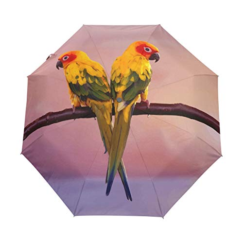 Ethel Ernest Bird Parrots Couple Portable Windproof Anti-UV Auto Open Close 3 Foldable Waterproof Umbrella by Ethel Ernest