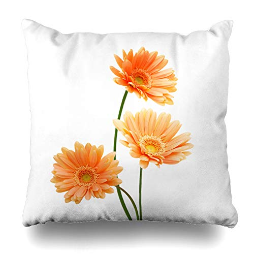 Ahawoso Throw Pillow Cover Square 20x20 Stem Orange Daisy Three Yellow Gerber Flowers Daisies Floral Nature Green Gerbera Bloom Blooming Design Zippered Cushion Case Home Decor Pillowcase