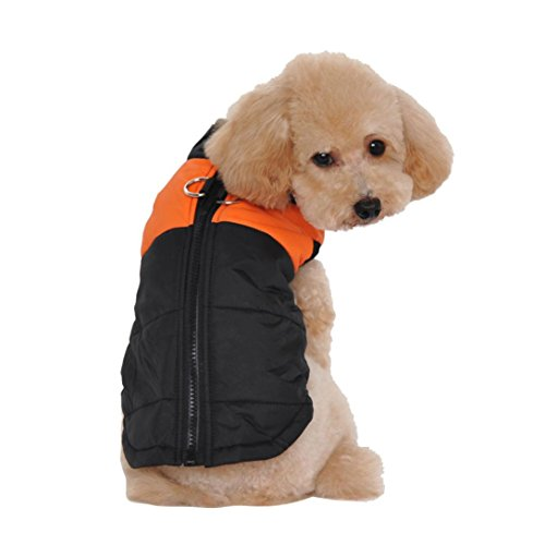 Puppy Clothes,Neartime Winter Warm Clothes for Dogs Padded Waterproof Coat Jacket (M, Orange) (Pumpkin Outfit For Dogs)
