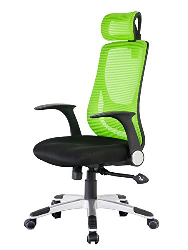 Merax New Office Mesh Lumbor Support Chair Office Chair Computer Gaming Chair Reclining Chair (High Back Mesh 1)