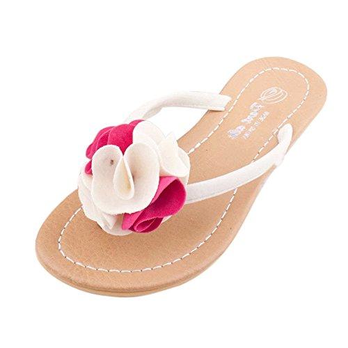 SKY Comfortable to wear it !!!Decoración de la flor las sandalias de los deslizadores del hogar de playa 2cm Heel Height Rosa caliente