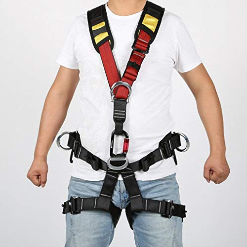 Highest Rated Climbing Active Protection