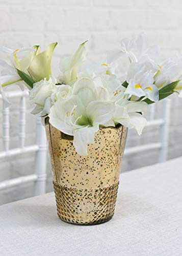 - Mercury Glass Array Floral Vase in Light Gold - 7.5