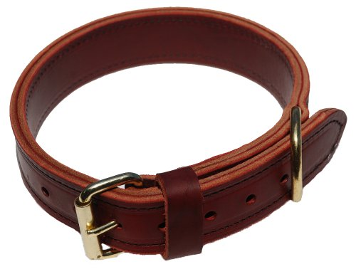 Signature K9 1-1/2-Inch Agitation Collar, Burgundy