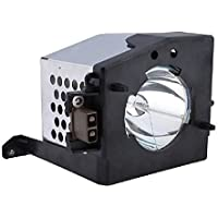 Amazing Lamps TB25-LMP Replacement Lamp in Housing for Toshiba Televisions