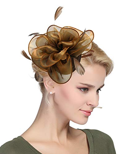 - Urban CoCo Women's Vintage Flower Feather Mesh Net Fascinator Hair Clip Hat Party Wedding (Series 4-Coffee)