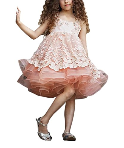 PLwedding Stylish 3D Floral Appliqued Pink Flower Girls Dresses Ball Gowns Size 6 from PLwedding