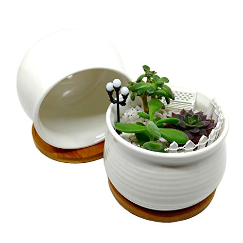 4.3-Inch Round Rimmed White Ceramic Succulent Planter with Bamboo Tray | Set of Two | Minimalist Design ()