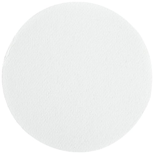 Ahlstrom 1510-0425 Borosilicate Glass Microfiber Filter Paper, 0.7 Micron, Slow Flow, Grade 151, 4.25cm Diameter (Box of 100)
