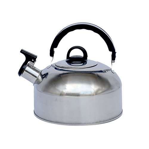 Little World Stainless Steel Whistling Tea Kettle-3.2 (Silver Hammered Style Earrings)