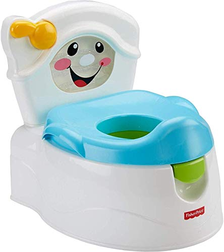 Fisher-Price Learn-to-Flush Potty Frustration