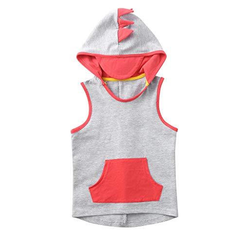 NUWFOR Kids Baby Boys Cartoon Print Dinosaur Animal Hooded Tee Tops Casual Sweatshirt Short Set for Toddler(Gray,2-3 Years)]()