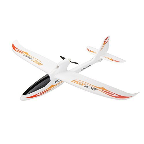 Goolsky Wltoys F959 SKY-King 2.4G 3CH Radio Control RC Airplane Aircraft RTF Version ()