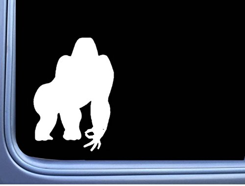 Gorilla Sticker The Best Amazon Price In Savemoneyes