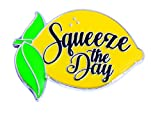 Squeeze the Day Motivational Recognition Award Lapel Pins, 6 Pins