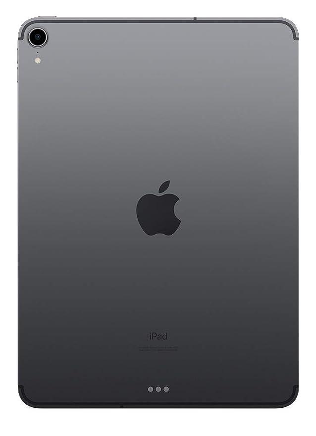 Apple iPad Pro (11 pouces, Wi-Fi + Cellular, 64 GO) - Gris Sidéral: Amazon.fr