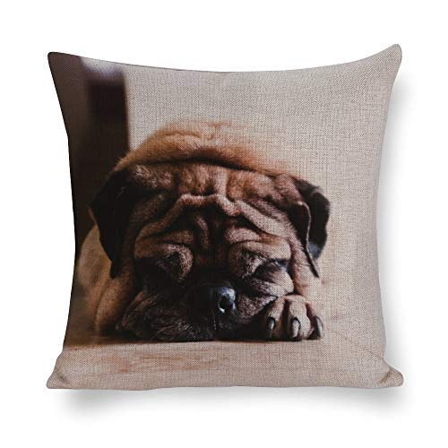 Mesllings Fawn Pug Pet Fur Floor 2PCS Best Gifts Decorative Throw Cotton Linen Pillowcase Cushion Cover Case for Sofa Living Room Family Office - 24 Inch