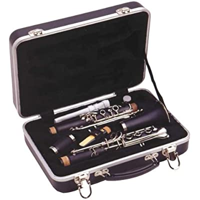 guardian-cw-041-cl-abs-case-clarinet