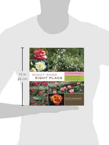 American Rose Society Encyclopedia of Roses  The Definitive AZ Guide
