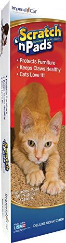 imperial cat scratch - 4