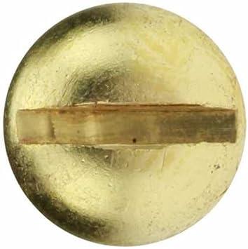 Reidl Holzschraube halbrund 4 x 12 mm DIN 96 Messing blank 10 St/ück