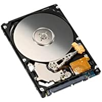 Generic 320 GB 320GB 2.5 Inch Sata Laptop Internal Hard drive 5400 RPM For Laptop/Mac/PS3 (320 GB)