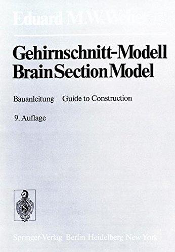 Gehirnschnitt-Modell / Brain Section Model: Bauanleitung / Guide to Construction: Mit Ausfuhrlicher Bauanleitung / Including a Comprehensive Guide to Construction