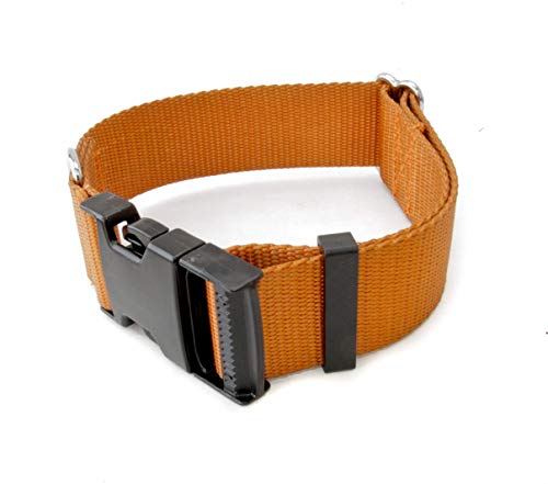 1 1/2 Inch Buckle Dog Collars - Heavy Duty Nylon (1.5
