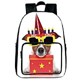 """iPrint Vogue Pressure Relief Spine Bag,Birthday Decorations for Kids,Party Dog with Sunglasses and Cone Hat Boxes Stars Image,Red and Yellow,for Children,3D Print Design.15.7""""x 11.8""""x 6.3"""""""
