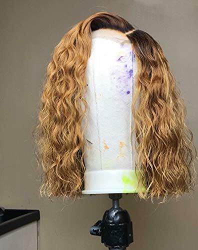 Dream Beauty Hair Short Lace Front Wigs Brazilian Human Hair Ombre 1B/27 Honey Blonde Loose Curly Wave Full Lace Wigs For Black Women (14 inch, front lace wig) (Dark Brown Hair With Blonde In Front)