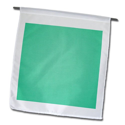 3dRose fl_173998_1 Image of Solid Pistachio Green Garden Flag, 12 by 18-Inch ()