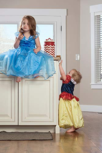 Little Adventures Deluxe Cinderella Butterfly Princess Disfraz para niñas (Edad media 3-5)