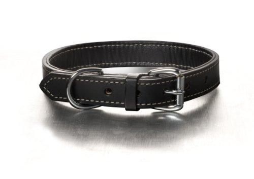 Woofwerks Black Tie Collar, 1 by 20-Inch
