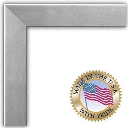 Chrome Steel Frame Set - ArtToFrames 24x36 inch Chrome Stainless Steel Picture Frame, WOMFRBW26966-24x36