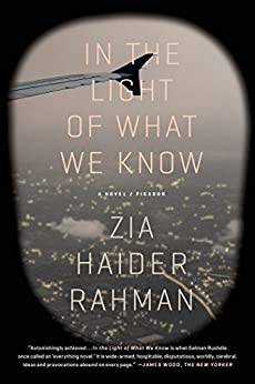 In the Light of What We Know: A Novel by [Rahman, Zia Haider]