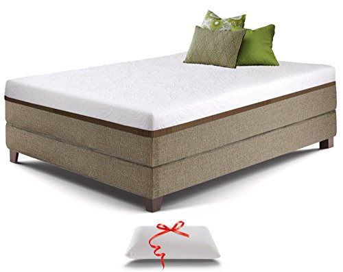 Live and Sleep Resort Ultra Queen Size, 12-Inch Medium-Firm Cooling Gel Memory Foam Mattress with Premium Form Pillow, CertiPUR (Deluxe Spring Futon Mattress)