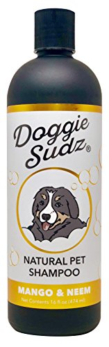 Caroline's Doggie Sudz Pet Shampoo, Natural Mango & Neem, 16 Oz - Oatmeal Dog Shampoo and Conditioner Infused with Neem Oil and Organic Extracts ()