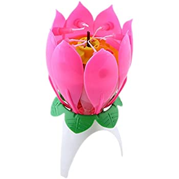 Pink Revolving Music Birthday Candles Petals Open