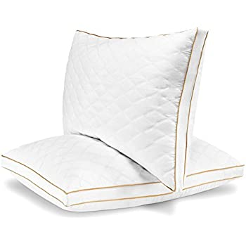 Amazon Com Sleep Restoration Gel Pillow 2 Pack Queen