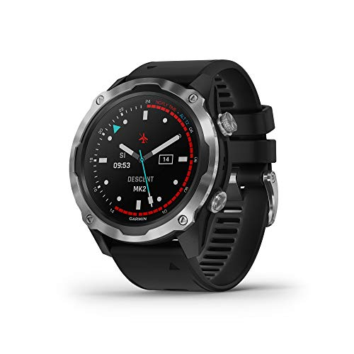Garmin Descent Mk2, Watch-Style Dive Computer, Multisport Training/Smart Features, Stainless Steel with Black Band, 010-02132-00
