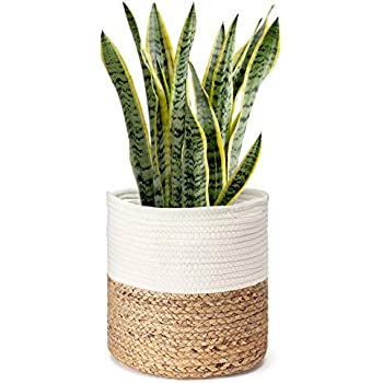 Mkono Cotton Rope Plant Basket with Water Hyacinth Modern Indoor Planter Up to 10 Inch Pot Woven Storage Organizer with Handles Home Decor Christmas Gift Idea, 11