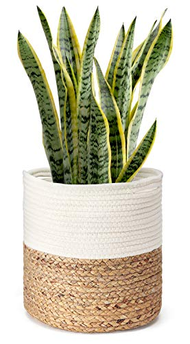 Mkono Cotton Rope Plant Basket with Water Hyacinth Modern Indoor Planter Up to 10 Inch Pot Woven Storage Organizer with Handles Home Decor, 11
