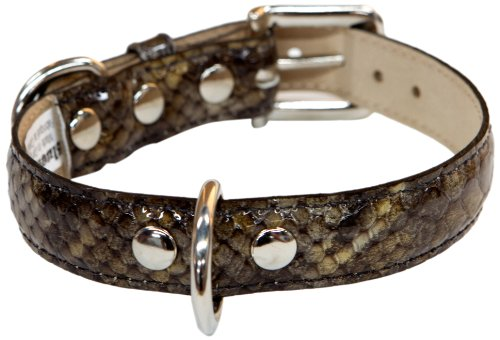 - Bluemax Genuine Leather Patent Snake Dog Collar, 3/4-Inch by 14-Inch, Olive