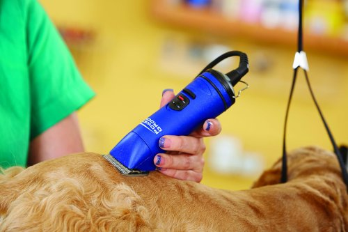 Andis-Power-Groom-5-Speed-Detachable-Blade-Clipper-Professional-Animal-Grooming-Blue-AGRV-63360